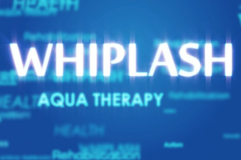Whiplash overview of neck's ligament structure artcile by Fish & Field Biokineticists