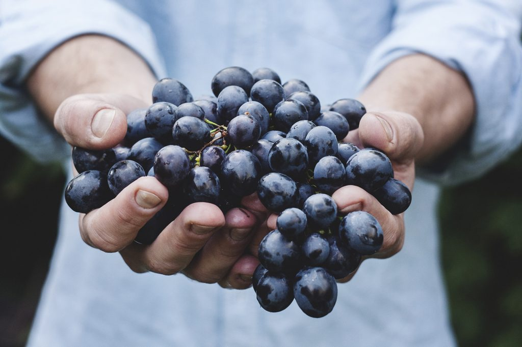 high blood pressure improves with good diet like eating fresh fruit grapes advised by Fish & Field Biokineticists
