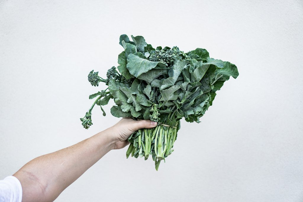 Person holding bunch of dark-green leafy vegetables Kale and Spinach