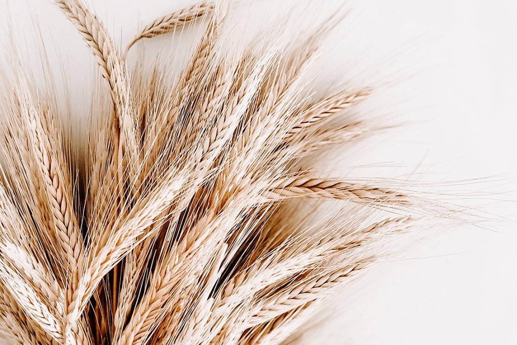 Whole-wheat grain products like bread, rice and pasta are a healthy alternative to refined carbs.