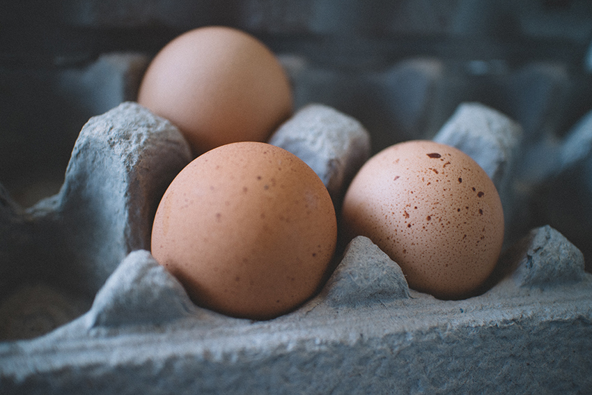 Eggs are high in protein and Vitamin B