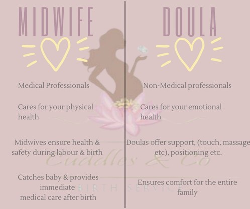 midwife vs doula chart weighing the benefits of various support as we discuss prenatal health at Fish & Field Biokineticists